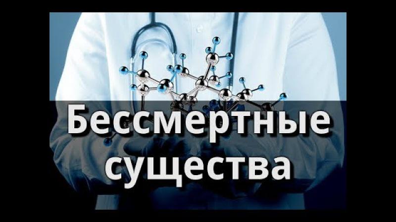 Бессмертные существа Пётр Гаряев