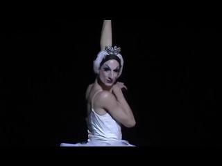 Умирающий лебедь, Балет Трокадеро, The Dying Swan, Trockadero