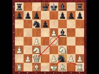 Anatoly Karpov vs Nigel Short  (Budapest Defense)gm 1 (1991 Candidates)