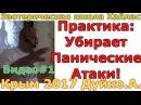 Андрей Дуйко видео.1 МК Крым 2017 Практика от панических атак. Andrey Duiko Эзотерика Кай