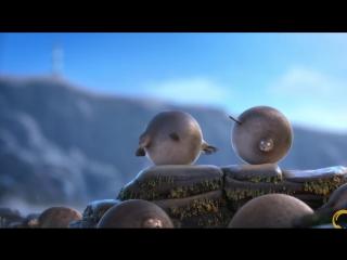 Если бы все животные на планете были круглыми (хорошее настроение, юмор, забавное видео, мультик, мультфильм, звери, год свиньи)