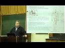 Купраш Д В Иммунология Клеточная структура иммунной системы Лекция 2