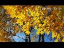 Autumn Waltz | Beautiful romantic piano music | Beautiful video | Vladimir Sterzer