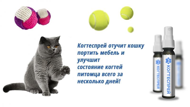 Когтеспрей - спрей для кошек в Атырау