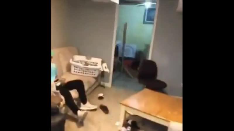 Вышел через парадный вход хорошее настроение юмор смешное домашнее видео скрытая съемка дома идиот студент дупак дом