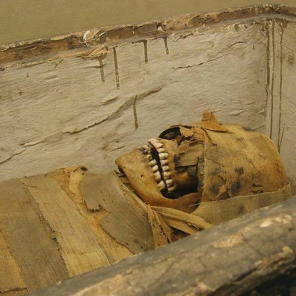 Картинки мумии и пирамиды