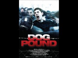 Загон для собак(Собачий приют) / Dog Pound, 2009 перевод Владимир Mnemic