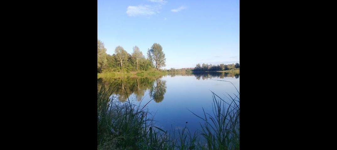 Озеро архимандритское уфа рыбалка отзывы