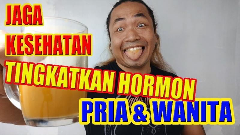 ALAN KRIBO Jaga Kesehatan Tingkatkan Hormon Pria Wanita