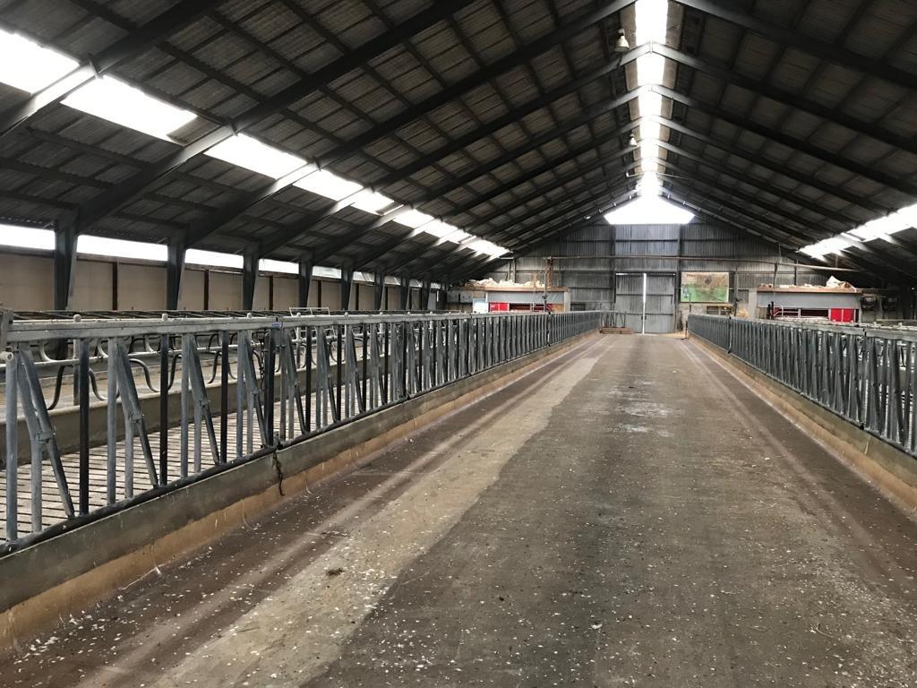 Карантинная ферма компании Scanova A/S готова к приёму отобранного племенного скота