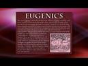 Mark passio erklärt die eugenik