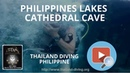 Diving in philippines, fish and lakes Cathedral cave with diving center Thailand Diving Club Pattaya