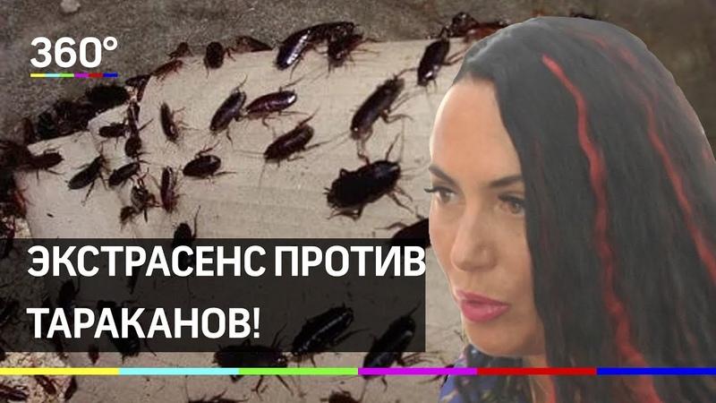 Участницу Битвы Экстрасенсов едва не съели тараканы в Греции