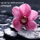 Орхидея - Шум дождя