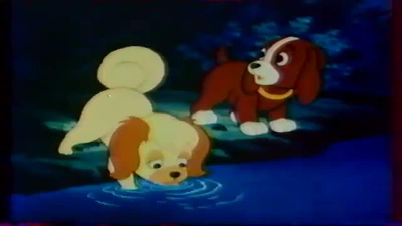 The Puppy's Further Adventures Ausztráliai kaland