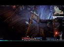 New Pet ! Lost Ark Assassin PvP