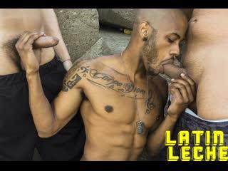 Latin leche 91