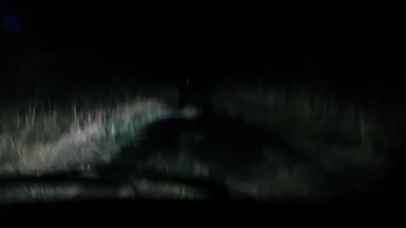 ночь. тянем паджерика