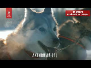 """Приходи на фестиваль """"Открой свою Сибирь"""" 30 ноября"""