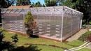 Melihat lihat Greenhouse Ideal di PP Darul Qur'an al Karim Baturraden