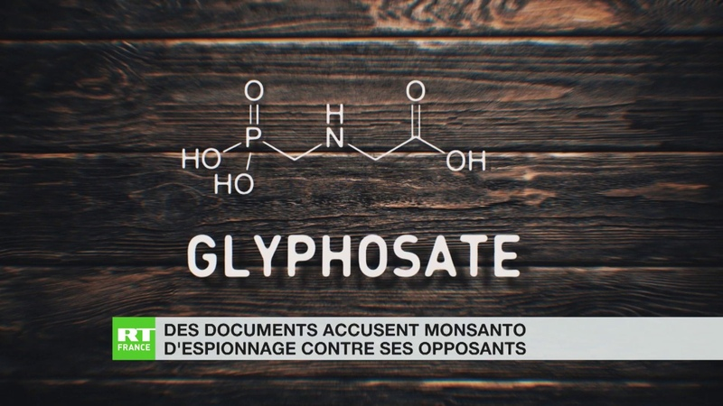 Des documents accusent Monsanto d'espionnage contre ses opposants