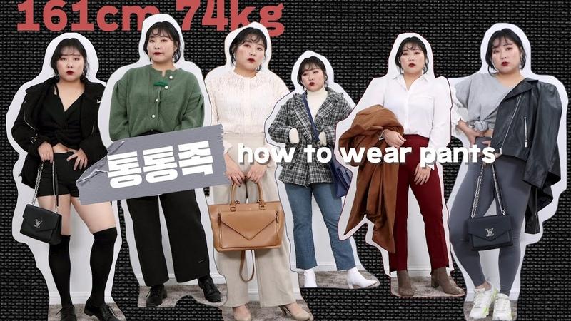 [통통 바지] 통통이들 옷가게에서 하의는 절대 못 사는 거 공감? 팬츠 하울 룩북👖통통녀코디 통통하의 데일리룩