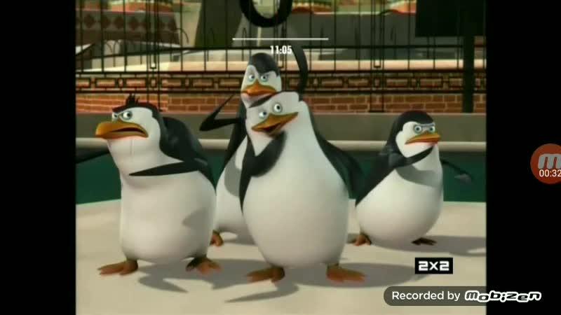 2х2 Заставка Пингвинов из Мадагаскара (29.10.2019).