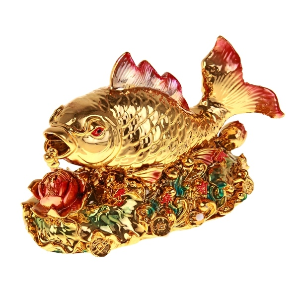 город фото цвета удачи для рыб один