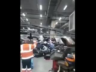 Багажный коллапс в Шереметьево