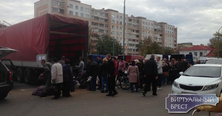 Смотрите, какие очереди выстраиваются на ярмарке в Бресте за картошкой по 60 копеек