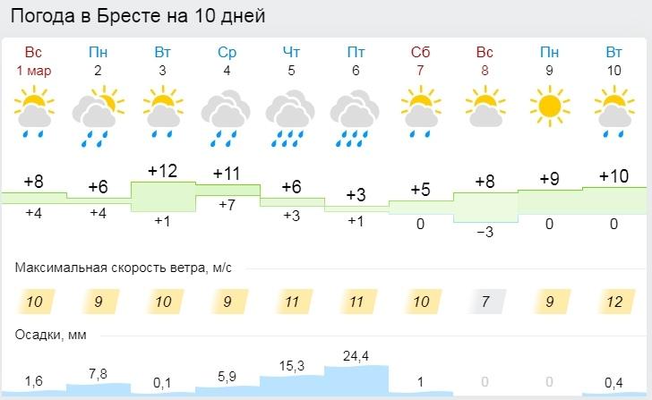 До +10°С ожидается в Беларуси 2 марта 2020 года (весна пришла)
