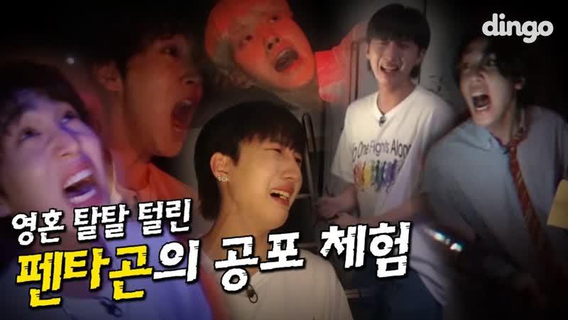 [14.08.2019] Horror preview @ 딩고 무비 / dingo movie