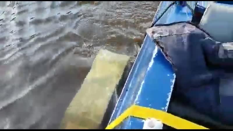 Забыл отцепить прицеп от лодки! I forgot to unhook the trailer from the boat