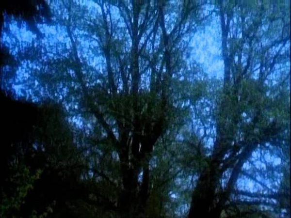 Музыка и кадры из фильма Робин из Шервуда wmv