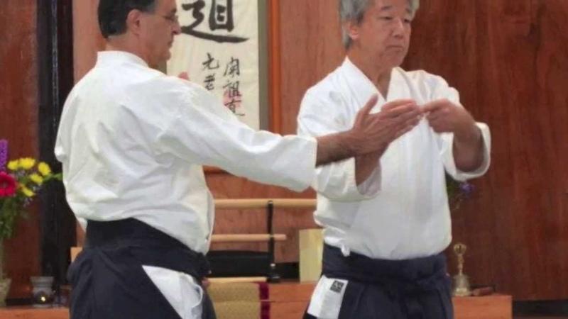 Ikeda Shihan Seminar Preview 2013