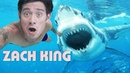 NEW BEST MAGIC TRICKS EVER SHOW 2 BEST MAGIC VINES of ZACH KING COLLECTION
