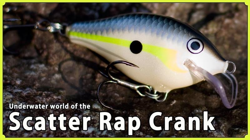Underwater world of the Scatter Rap Crank Rapala スキャッターラップクランクの水中映像とスペック