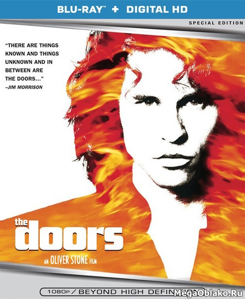 Дорз / The Doors (1991/BDRip/HDRip)