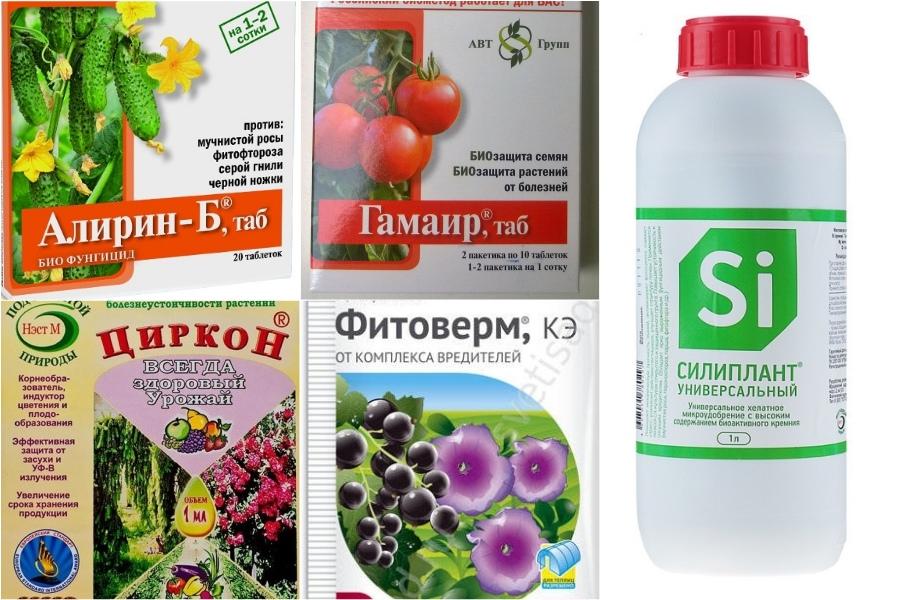 Баковая смесь Чудодейственный коктейль для защиты растений от болезней и вредителей