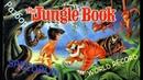 Разбор Jungle Book NES,Dendy World record SPEEDRUN - Разбор Книга Джунглей ДЕНДИ Спидран!