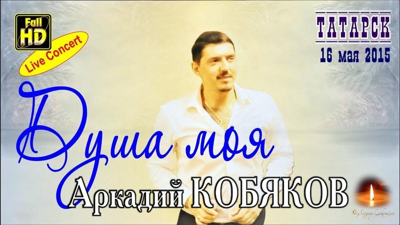 Live Concert/ Аркадий КОБЯКОВ - Душа моя (Татарск, 16.05.2015)