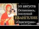 10 августа Евангелие дня с толкованием. «Путеводительница»