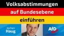 Jochen Haug AfD Volksabstimmungen auf Bundesebene einführen