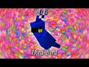 Minecraft Parrots Wholesome Dancing