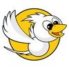 FLYBIRD Int