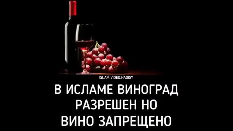 B__i__l__a__l__BoT6TjbFypt.mp4