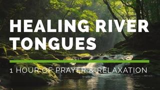 Healing River Tongues - 1 Hour of Prayer & Relaxation - Joshua Mills & Steve Swanson
