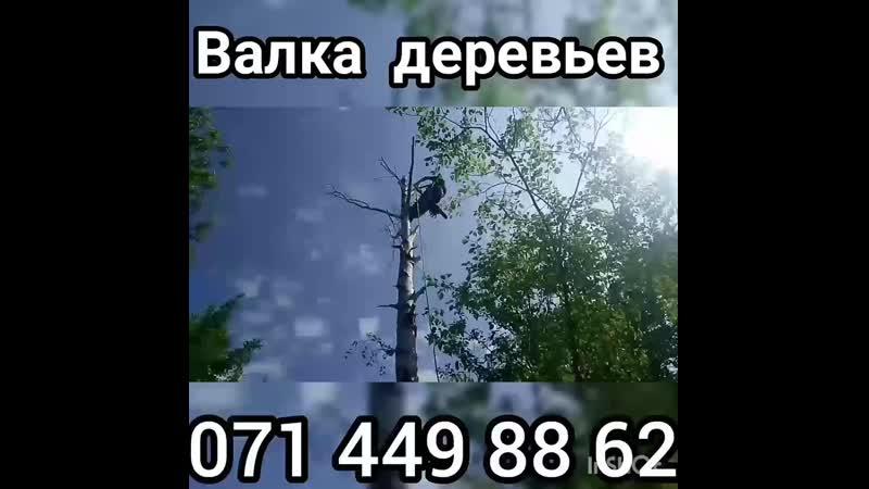 Валка Деревьев Донецк Макеевка ДНР спил дерева  Кронирование