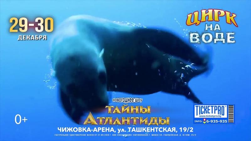 Шоу «Секреты Атлантиды» (Минск, «Украинский цирк на воде», 2019)