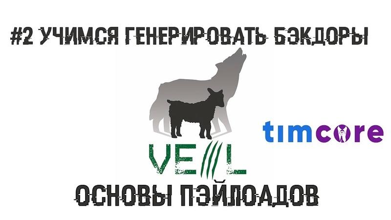 2 Учимся генерировать бэкдоры. Обзор Veil 3.1.11. Основы пэйлоадов | Timcore